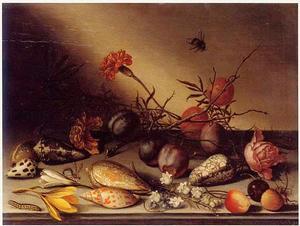 Stilleven van vruchten, bloemen, schelpen en insekten op een stenen plint