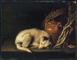 Een slapende hond naast enkele voorwerpen