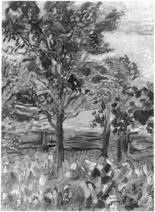 Landschap met bomen