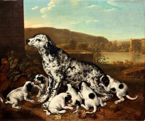 Portret van een Dalmatiër met zes jongen