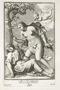 Venus en Adonis (pl. XXIII)