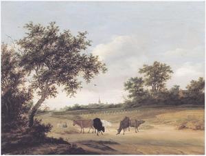 Glooiend landschap met koeien op een weg langs akkers