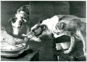 Drie honden vechten om een schaal met slachtafval