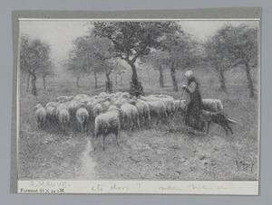 Herderin met schapen
