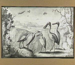 Heuvellandschap met vogels, op de achtergrond een stad