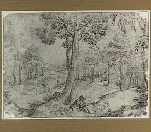 Boslandschap met tekenende man