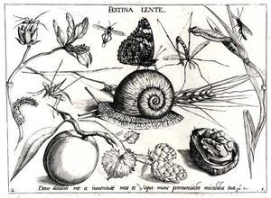 Slak, vlinder en andere insecten met bloemen, perzik en halve walnoot