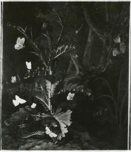 Slang, vlinders en een distel in een boslandschap
