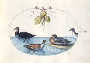 Eenden en eendachtigen onder een festoen van artisjokken en pastinaak