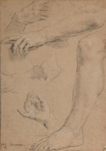 Studie van handen, een been en een arm
