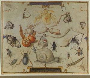 Emblematisch blad met vlinders en andere insecten (de vier elementen)