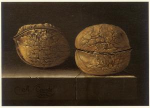 Stilleven van twee walnoten op een stenen tafel