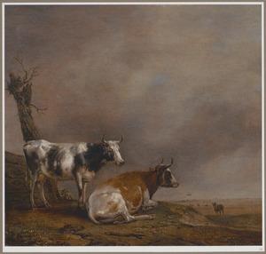 Twee koeien voor een hek bij een wilg