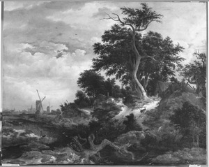 Landschap in de buurt van Haarlem