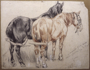 Trekpaarden
