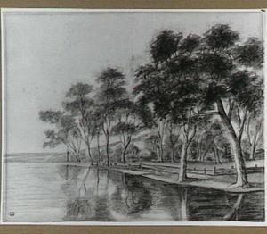 Bomen langs een waterkant