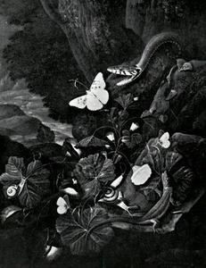 Bosstilleven met slang, hagedis, slakken en vlinders tussen bloeiende planten