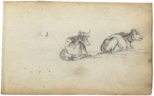 Twee koeien en twee koeienhoorns