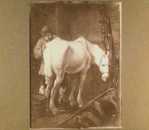 Paard in de stal door een boer verzorgd