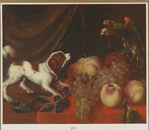 Een hond en een papegaai bij fruit op een tafel
