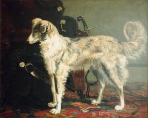 Interieur met een hond