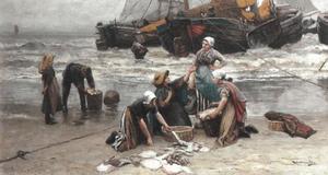 Sorteren van de vis