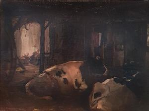 Two cows lying in a Brabant barn