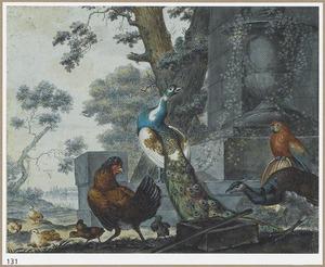 Pauwen en andere vogels in parklandschap