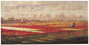 Voorjaar in Holland, de bollenvelden