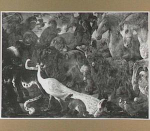 Diverse katachtigen, gevogelte, paarden, honden en geiten verzamelen bij de Ark van Noach