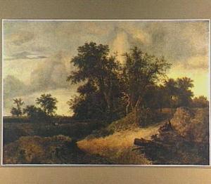 Duinlandschap met enkele rustende rezigers bij een groep bomen