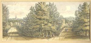 Landschap in de omgeving van Doesburg
