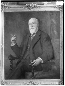 Portret van Jacobus van Hoboken (1845-1916)