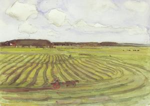 Landscape with mowed field II