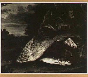 Vissen en visnet in een landschap