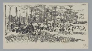 Kudde schapen in een bos