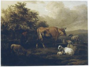 Landschap met rustend vee bij een schutting
