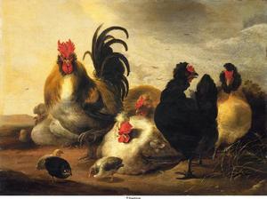 Een haan met vijf kippen en enige kuikens