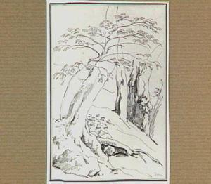 Rotslandschap met bomen in de omgeving van Terni