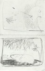Twee schetsen met marmotten