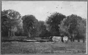 Landschap met koeien in schemering