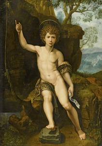 De H. Johannes de Doper als jongeman in de wildernis