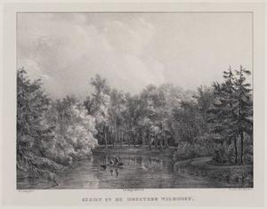 Vijver in het bos op het landgoed Wildhoef