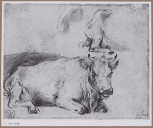 Studies van een koe en paardenhoofd