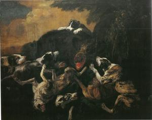 Hondengroep valt een everzwijn aan