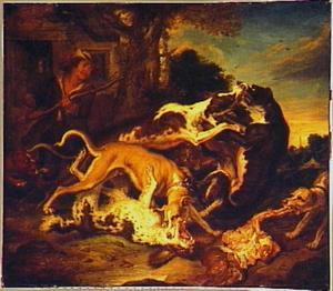 Hondengevecht op een boerenerf