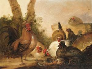 Kippen in een landschap