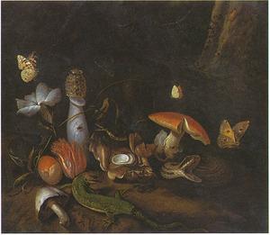 Bosstilleven met paddestoelen, reptielen en vlinders