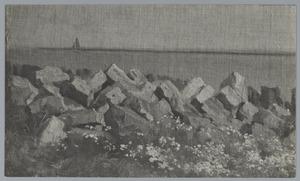Steenblokken aan de waterkant