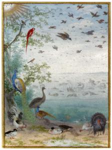 De schepping van de vogels en de vissen (Genesis 1:20)